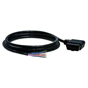 Cable, J1962M RA Type B to Open End, 6ft