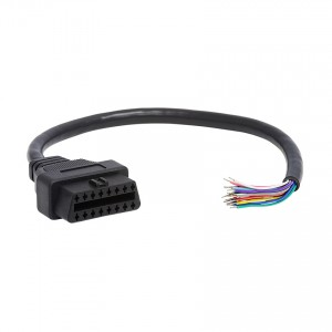 Cable, J1962F to Open End, 1ft